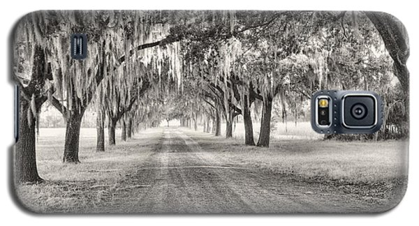 Coosaw Plantation Avenue Of Oaks Galaxy S5 Case
