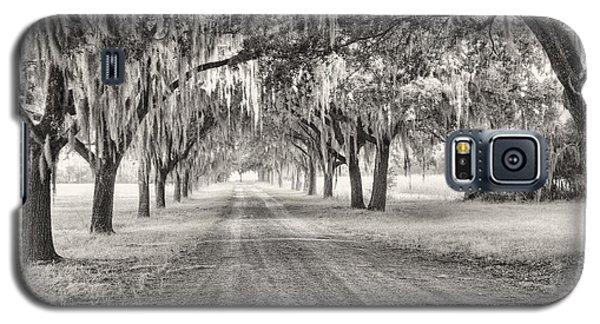 Coosaw Plantation Avenue Of Oaks Galaxy S5 Case