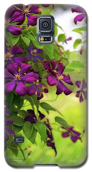 Copious Clematis Galaxy S5 Case