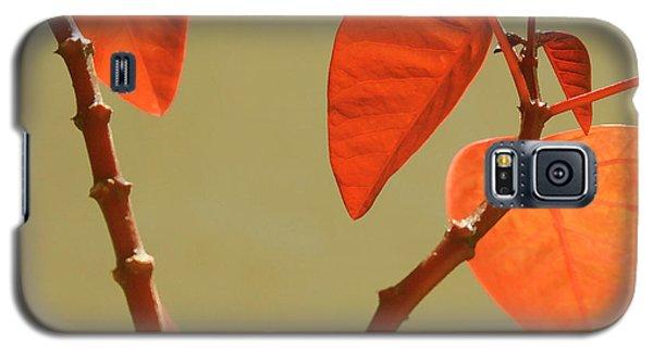 Copper Plant Galaxy S5 Case