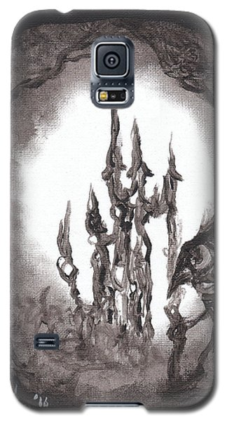 Coral Castle Galaxy S5 Case