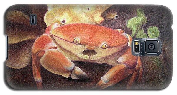 Coral Crab Galaxy S5 Case