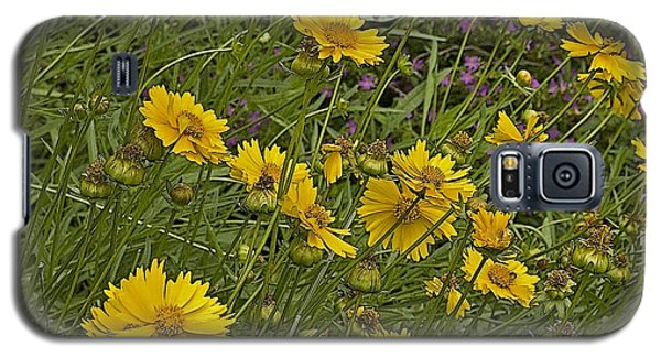 Coreopsis And Mexican Heather Galaxy S5 Case by Kerry Beverly