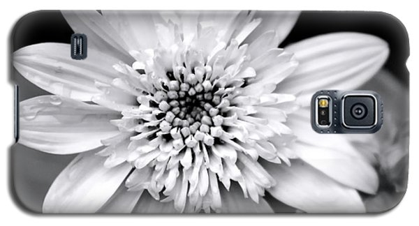 Galaxy S5 Case featuring the photograph Coreopsis Flower Black And White by Christina Rollo