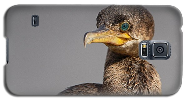 Cormorant Portrait Galaxy S5 Case