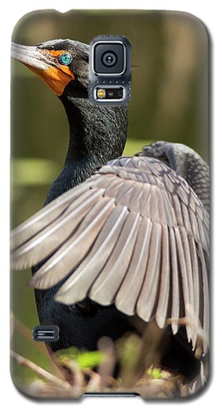 Cormorant Portrait Galaxy S5 Case