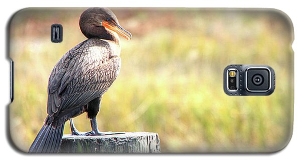 Cormorant Galaxy S5 Case