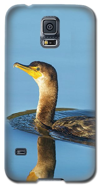 Cormorant Reflection Galaxy S5 Case