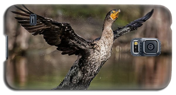 Cormorant Shaking Off Water Galaxy S5 Case