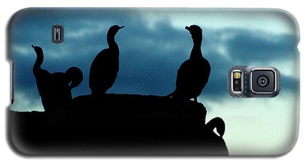 Cormorants In Silhouette Galaxy S5 Case
