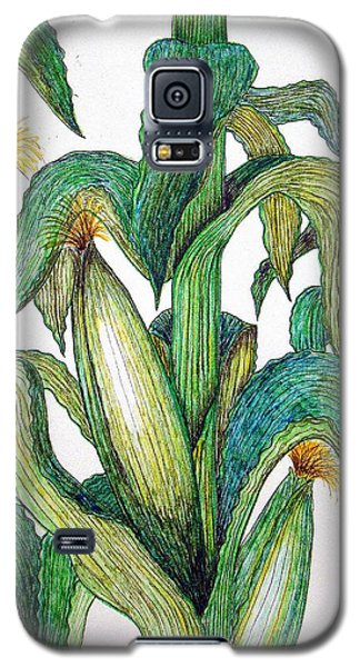 Corn And Stalk Galaxy S5 Case by J R Seymour