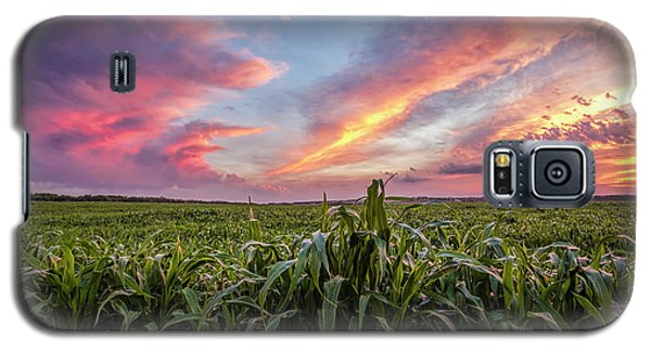 Field At Sunset Galaxy S5 Case