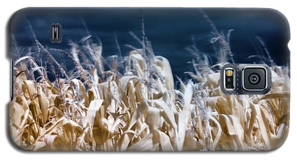 Corn Field Galaxy S5 Case
