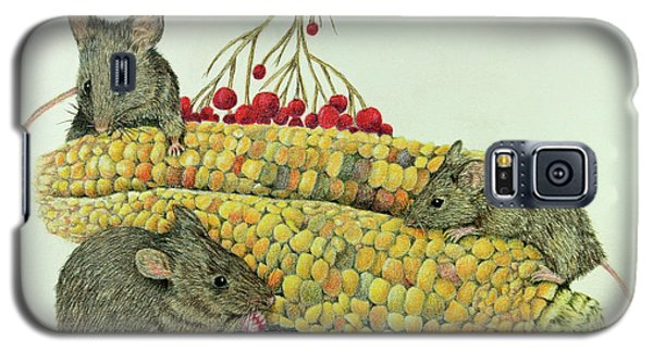 Corn Meal Galaxy S5 Case