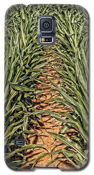 Corn Row Galaxy S5 Case