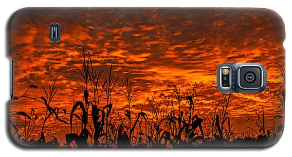 Galaxy S5 Case featuring the photograph Corn Under A Fiery Sky by John Harding