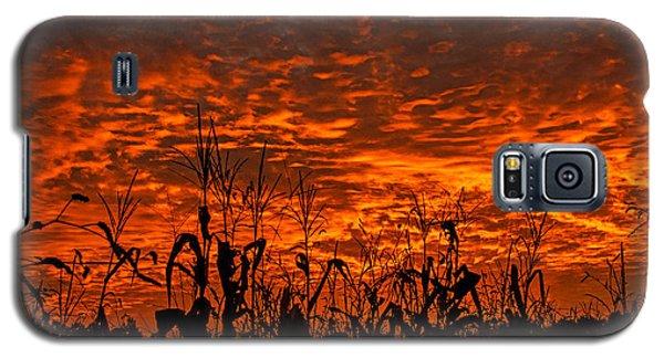 Corn Under A Fiery Sky Galaxy S5 Case