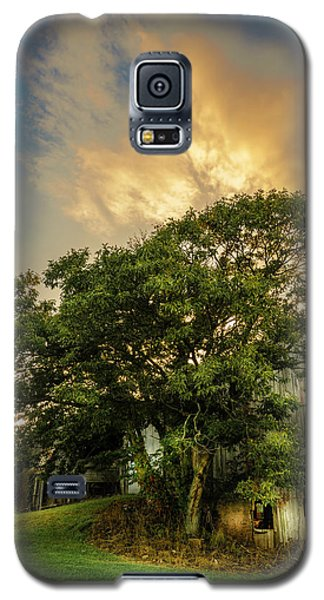 Galaxy S5 Case featuring the photograph Corner Oak by Marvin Spates