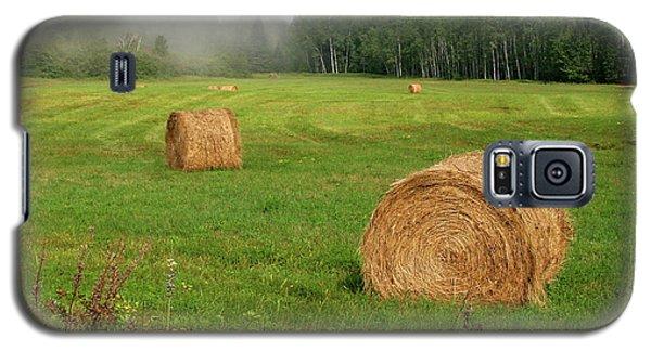 Cornucopia Galaxy S5 Case