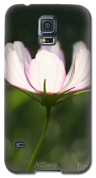 Cosmo Delicate Balance Galaxy S5 Case