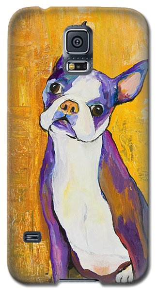 Boston Galaxy S5 Case - Cosmo by Pat Saunders-White