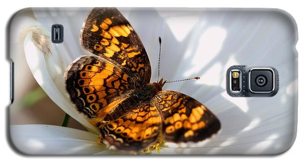 Pearl Crescent Butterfly On White Cosmo Flower Galaxy S5 Case