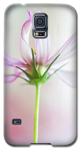 Galaxy S5 Case featuring the photograph Cosmos 3 by Elena Nosyreva