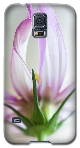 Galaxy S5 Case featuring the photograph Cosmos 4 by Elena Nosyreva