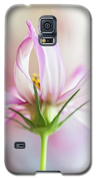 Galaxy S5 Case featuring the photograph Cosmos 5 by Elena Nosyreva