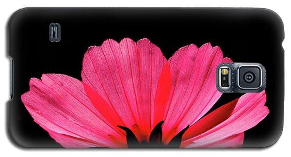 Cosmos Bloom Galaxy S5 Case