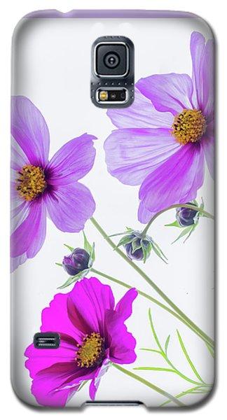 Cosmos Bright Galaxy S5 Case