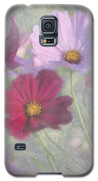 Galaxy S5 Case featuring the photograph Cosmos by Geraldine Alexander