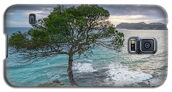 Costa De La Calma Tree Galaxy S5 Case