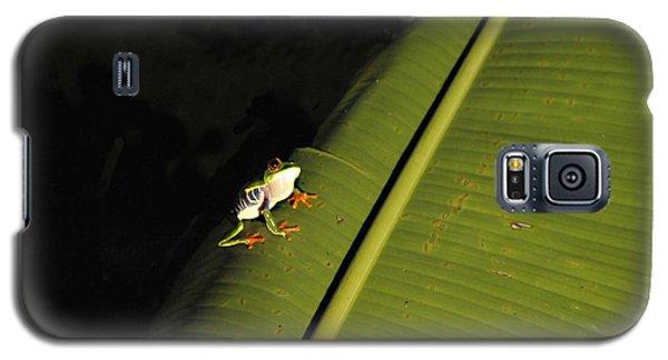 Costa Rica Red Eye Frog II Galaxy S5 Case