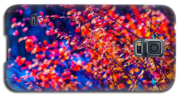 Galaxy S5 Case featuring the photograph Cotoneaster In Winter by Alexander Senin