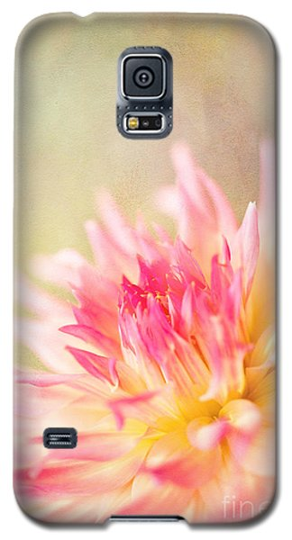 Cotton Candy Galaxy S5 Case