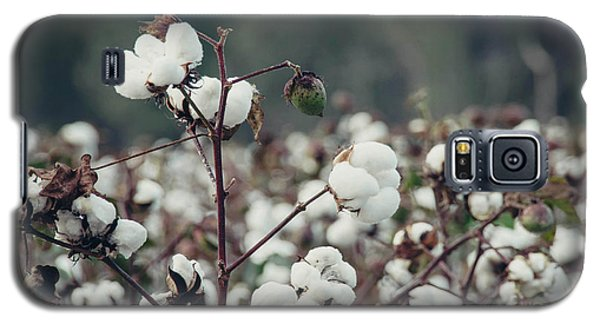 Cotton Field 5 Galaxy S5 Case