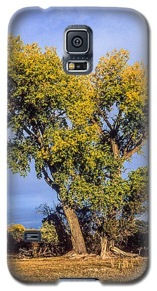 Cottonwood #4 Fall Ranch Colorado Galaxy S5 Case