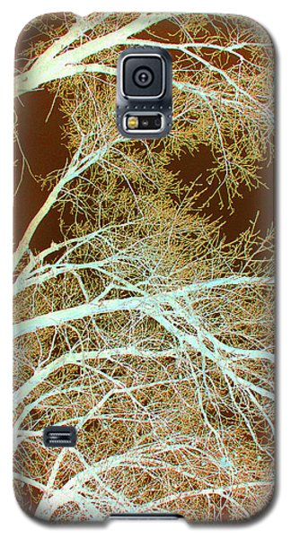 Cottonwood Conflux Galaxy S5 Case