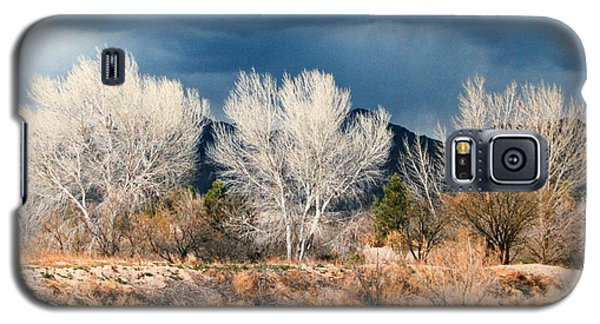 Galaxy S5 Case featuring the photograph Cottonwoods In Winter by M Diane Bonaparte