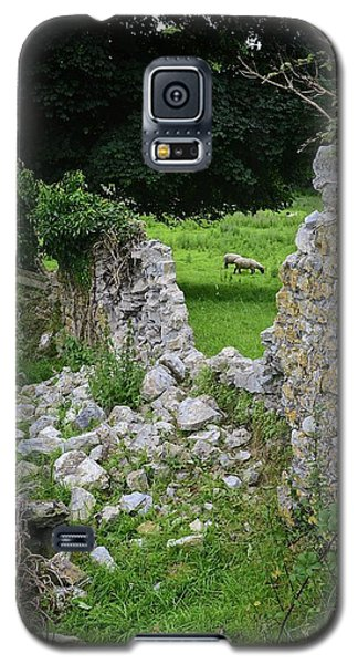 Counting Sheep Galaxy S5 Case