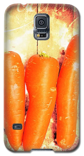 Country Cooking Poster Galaxy S5 Case by Jorgo Photography - Wall Art Gallery