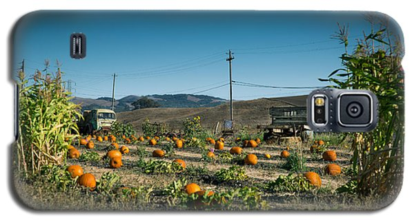 Country Pumpkin Patch Galaxy S5 Case