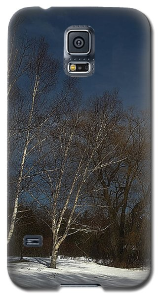 Country Roadside Birch Galaxy S5 Case
