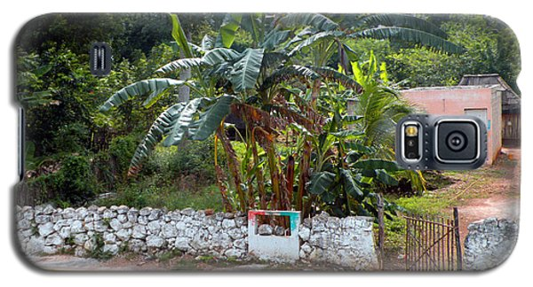 Galaxy S5 Case featuring the photograph Countryside Along The Yucatan Peninsula by Dianne Levy