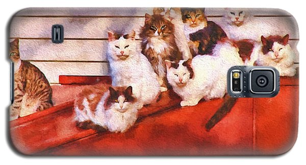 Countryside Cats Galaxy S5 Case