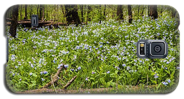 Covered In Bluebells Galaxy S5 Case