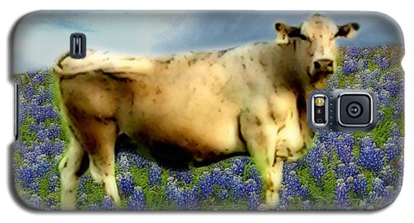 Galaxy S5 Case featuring the photograph Cow And Bluebonnets by Barbara Tristan