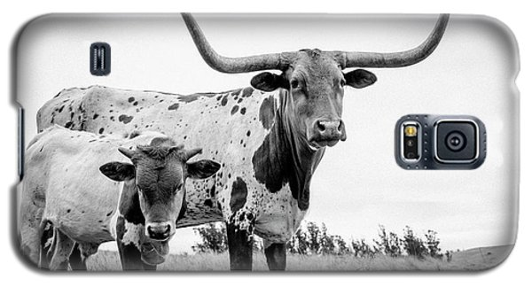 Cow Galaxy S5 Case - Cow And Calf In The Pasture by Sherri Rieck