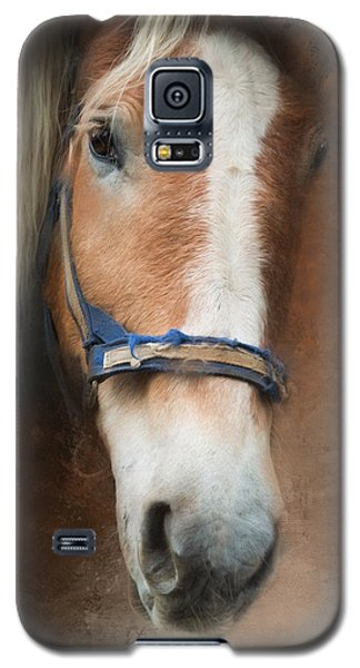 Galaxy S5 Case featuring the photograph Cow Pony by Robin-Lee Vieira